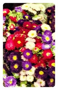 Eveleigh Market Flowers