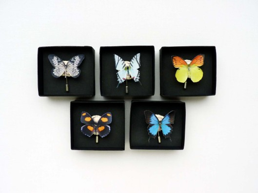 Image Lyndie Dourthe's Butterly Brooches