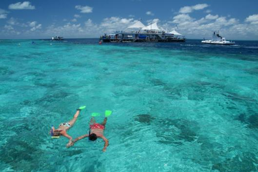 Image of snorkelling off Great Barrier Reef