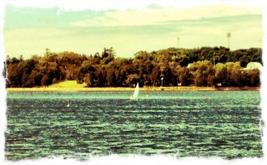 This Sydney Life Bay Walk