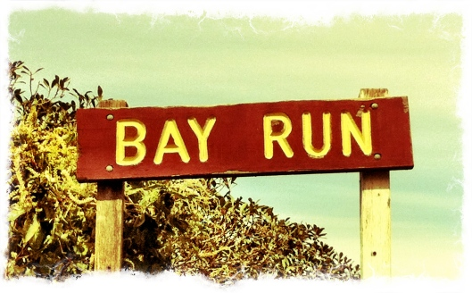This Sydney Life Bay Run Pic