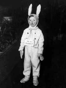 I'm a Rabbit Dress Up