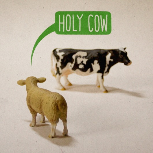 Aled Lewis Toy Stories Series - Holy Cow