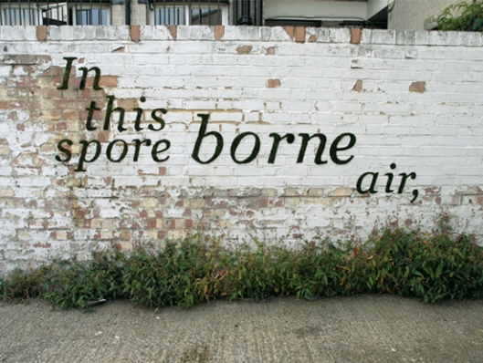 'Spore Borne' - Green Graffiti by Anna Garforth