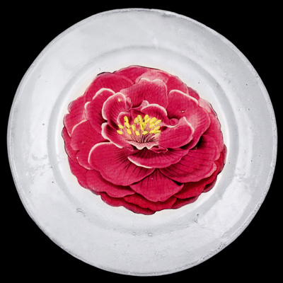 Image of John Derian 'Large Flower Plate' for Astier de Villatte
