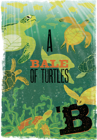 Image of Woop Studio's 'Bale of Turtles'