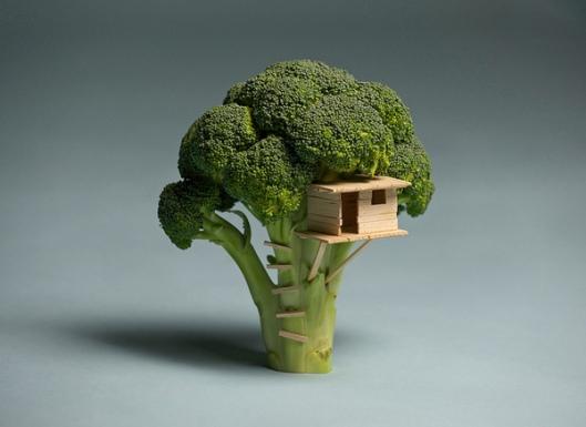 'Broccoli House' by Brock Davis