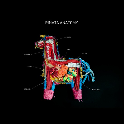 Piñata Anatomy by the Carmichael Collective