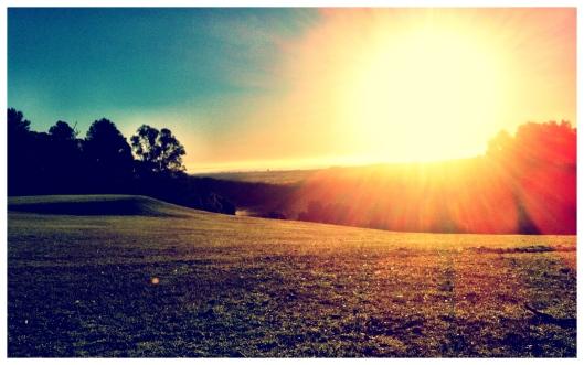 Dawn at Gwynganna