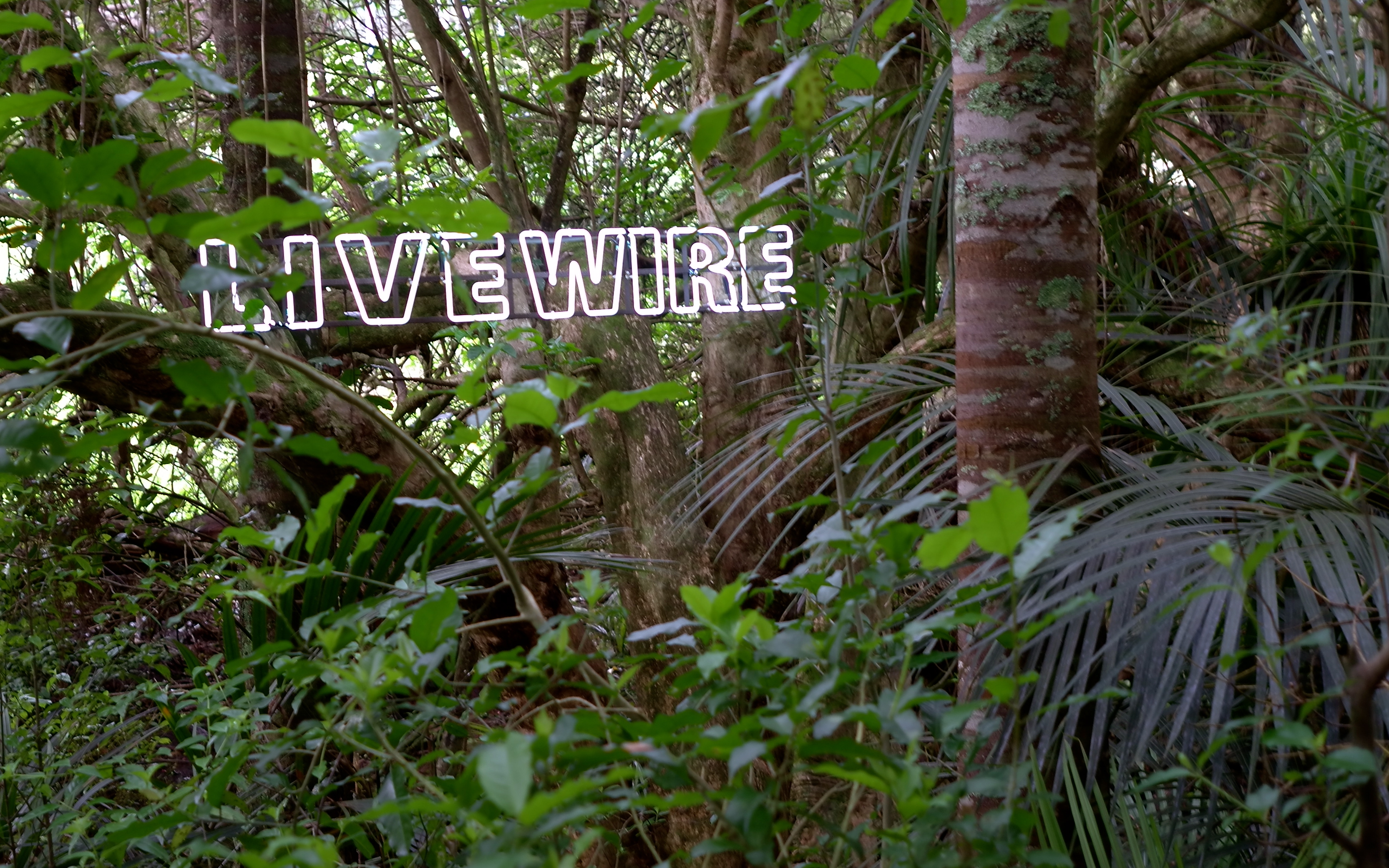 'Live Wire' by Mary-Louise Browne (Brick Bay Sculpture Trail)
