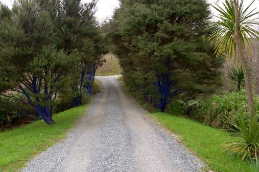 'The Blue Trees' by Konstantin Dimopoulos (Brick Bay Sculpture Trail)