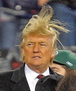 Donald Trump Shares a Bad Hair Day With TSL...(Image from here)