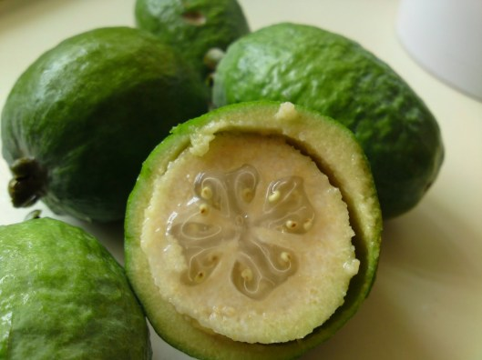 Feijoa (image from here)