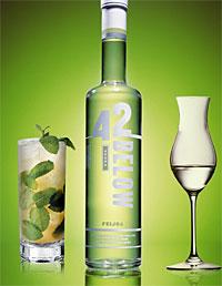 42° Below Feijoa Vodka (Image from here)