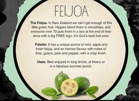 Feijoa Write Up (Source Unknown)