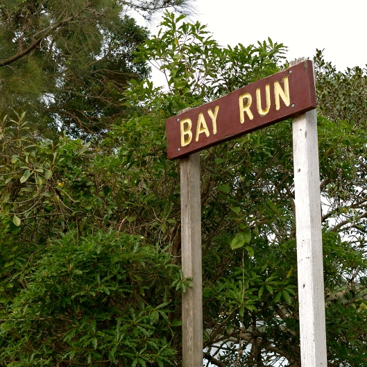 Iron Cove Bay Run Sign