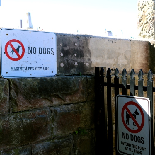 Waverley Cemetery keeps the dogs out (Image by LM for TSL)