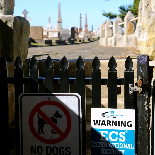 Waverley Cemetery makes it VERY clear dogs are unwelcome (Image by LM for TSL)