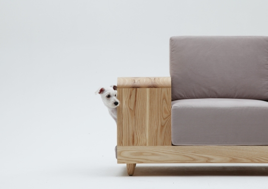 A sofa for you and your dog