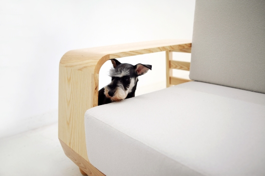 Dog Sofa by M.Pup (Image from M.Pup)