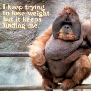 Weightloss Orangatang