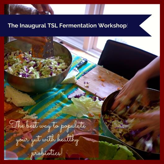 TSL Fermentation Workshop