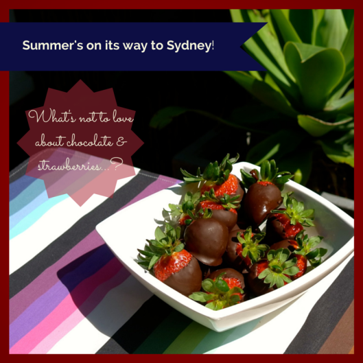 TSL Choc Dipped Strawberries