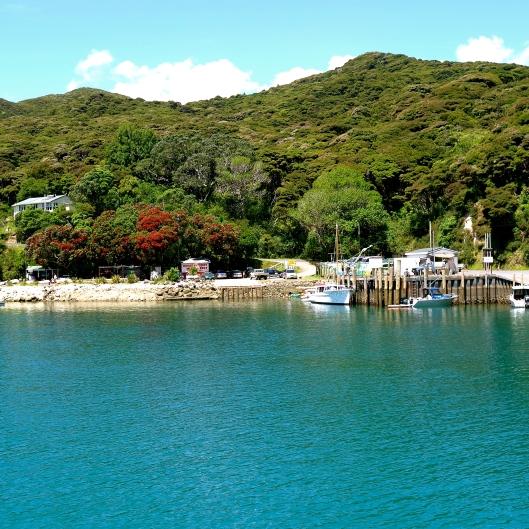 TSL Port Fitzroy, Great Barrier